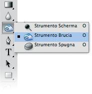 Figura 27: lo strumento Brucia