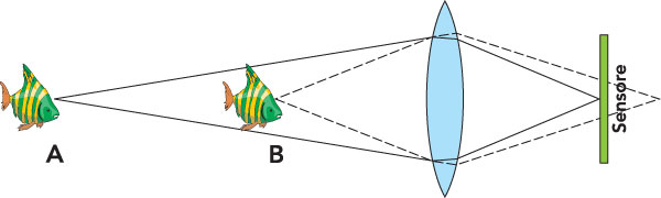 Figura 3: oggetti a distanze diverse dalla lente producano immagini che vanno a fuoco a distanze diverse