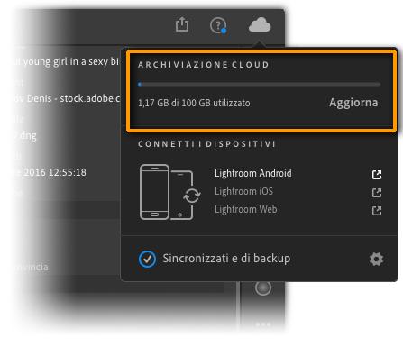 Figura 2: il pannello Archiviazione cloud mostra le informazioni sullo spazio disponibile nel cloud
